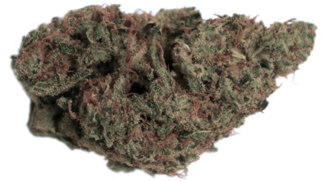 Gorilla glue #4 strain review