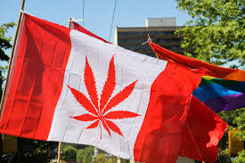 Canadian Senate Legalizes Marijuana
